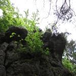 Kletterer über mir